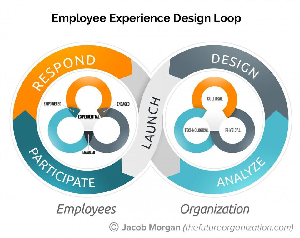 employee experience design loop