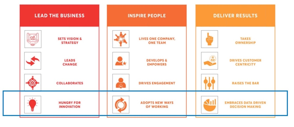 Vodafone Ziggo Leadership Model